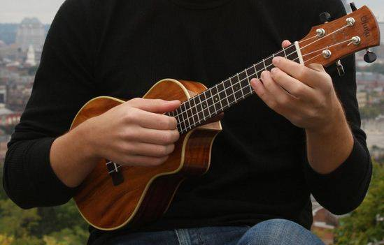 Ukulele Workshop (Children) @ Hunting Room, Stable Wing | Celbridge | County Kildare | Ireland